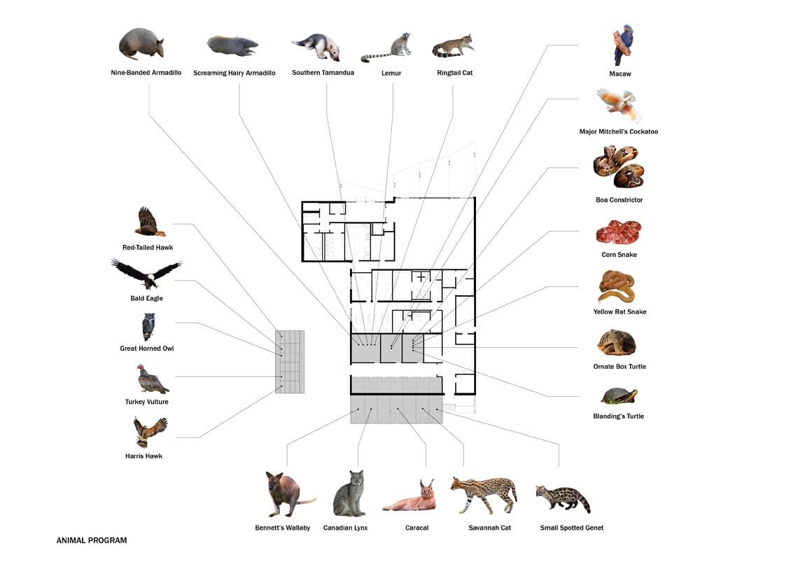 Animal Ambassador_Animal Program
