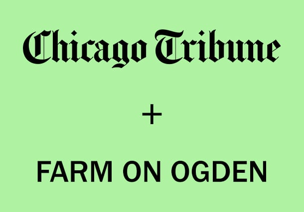 CHICAGO TRIBUNE FEATURES FARM ON OGDEN