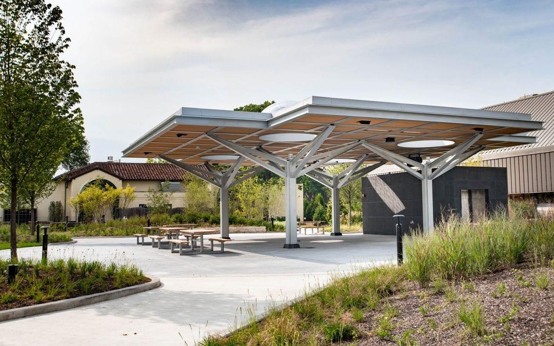 Hamill Family Nature Plaza