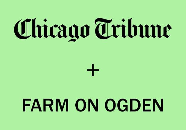 CHICAGO TRIBUNE FEATURES FARM ON OGDEN